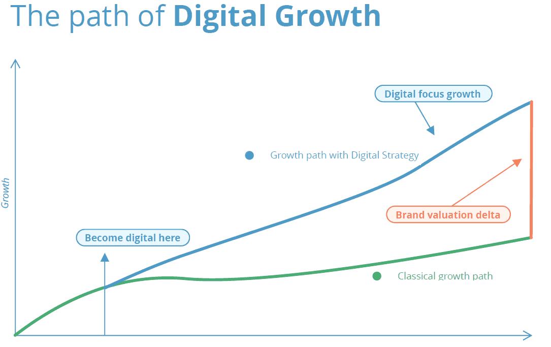 path of digital growth